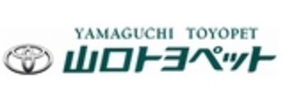 P y logo