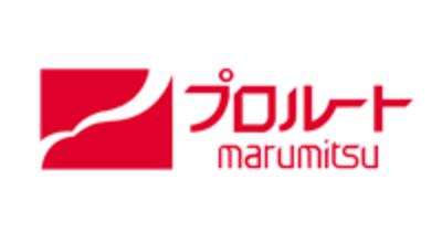 Proroute logo